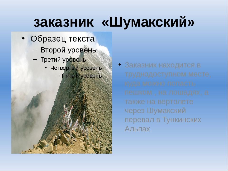 заказник «Шумакский» Заказник находится в труднодоступном месте, куда можно п...