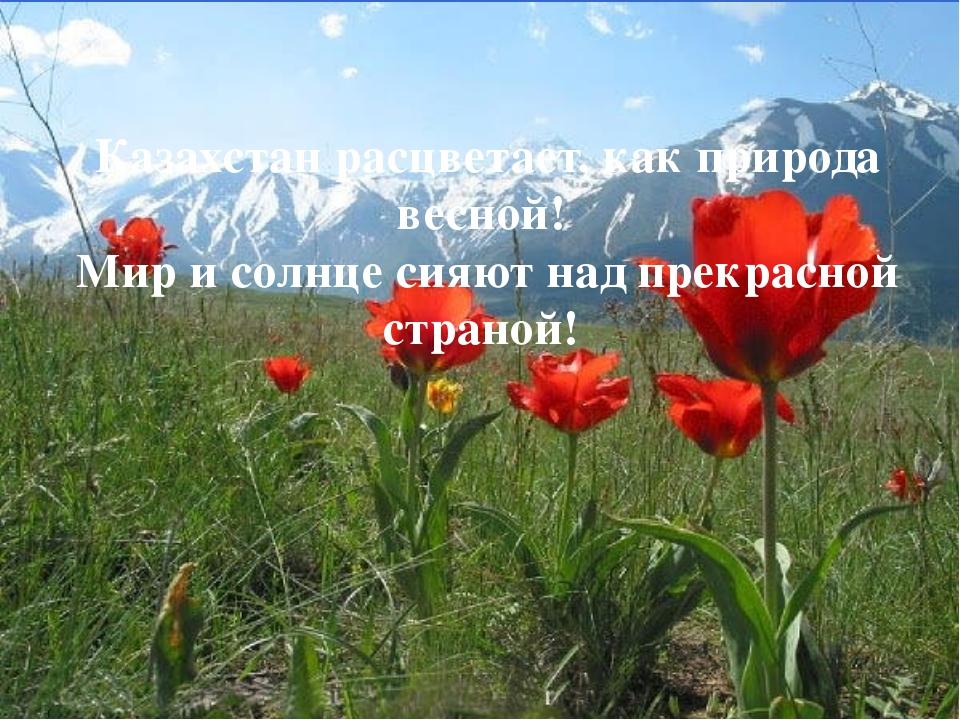 Казахстан расцветает, как природа весной! Мир и солнце сияют над прекрасной с...