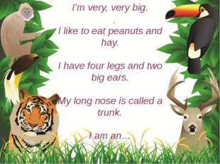 I'm very, very big. I like to eat peanuts and hay. I have four legs and two b