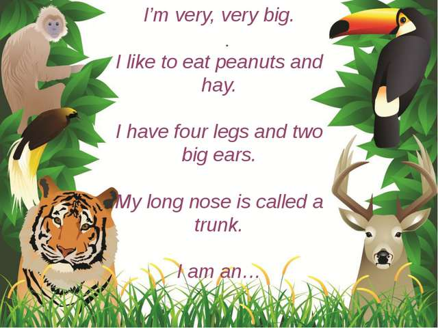 I'm very, very big. I like to eat peanuts and hay. I have four legs and two b...