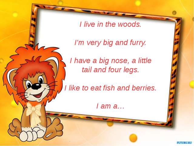 I live in the woods. I'm very big and furry. I have a big nose, a little tail...