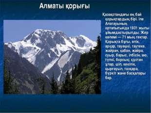 Алматы қорығы Қазақстандағы ең бай қорықтардың бірі. Іле Алатауының орталығын