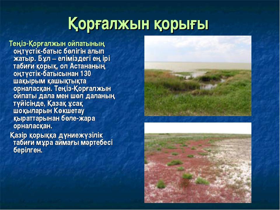 Қорғалжын қорығы Теңіз-Қорғалжын ойпатының оңтүстік-батыс бөлігін алып жатыр....
