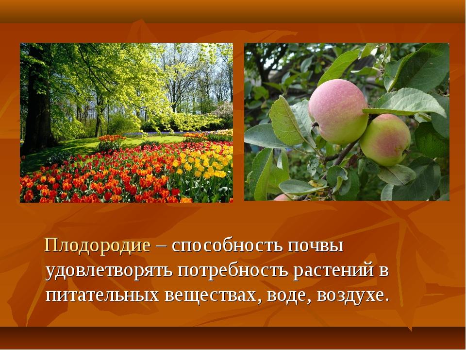 Плодородие – способность почвы удовлетворять потребность растений в питатель...