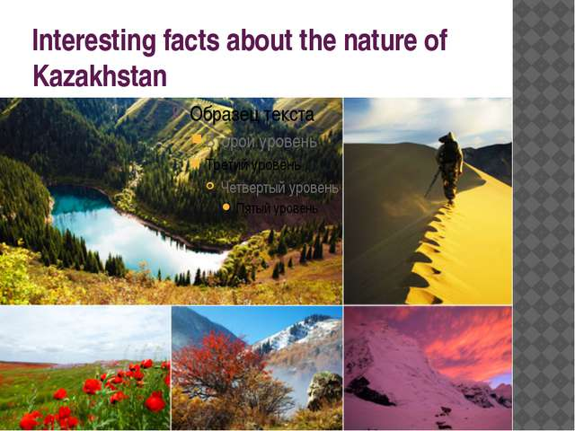 Interesting facts about the nature of Kazakhstan