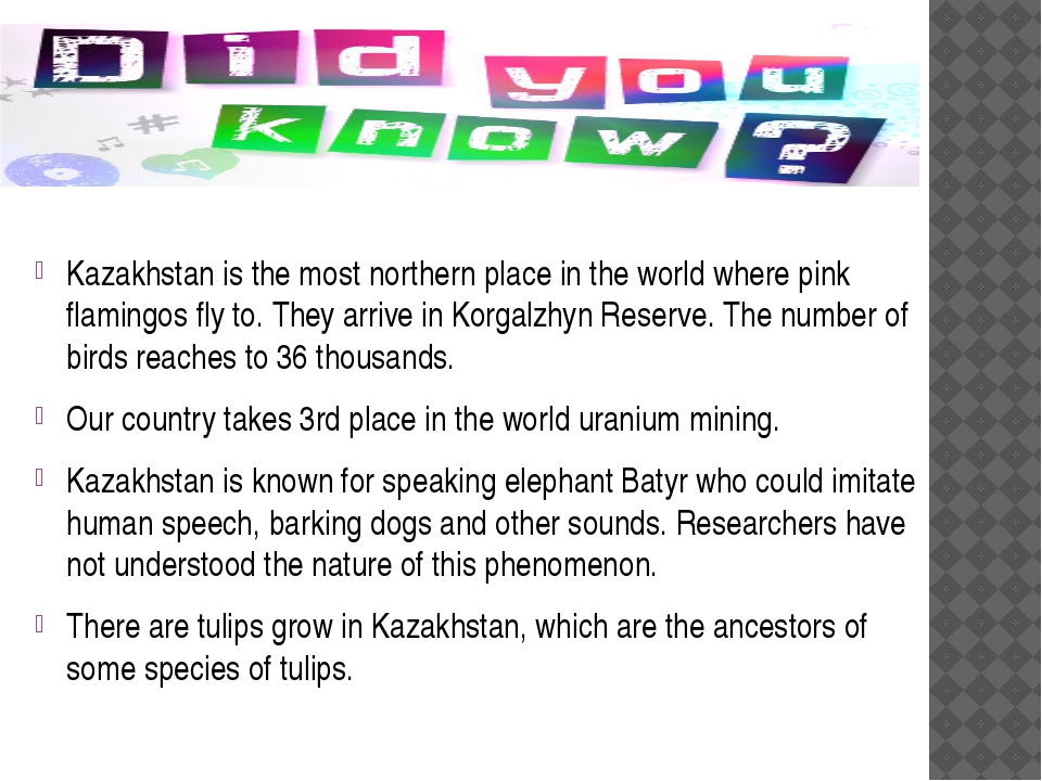 Kazakhstan is the most northern place in the world where pink flamingos fly...