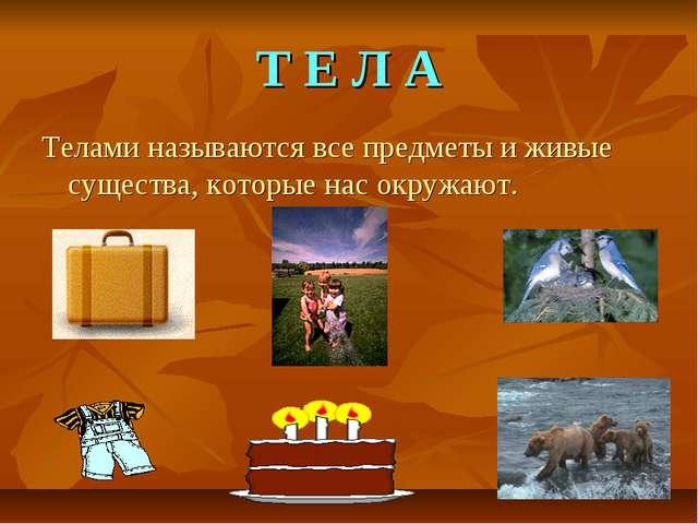 Т Е Л А Телами называются все предметы и живые существа, которые нас окружают.