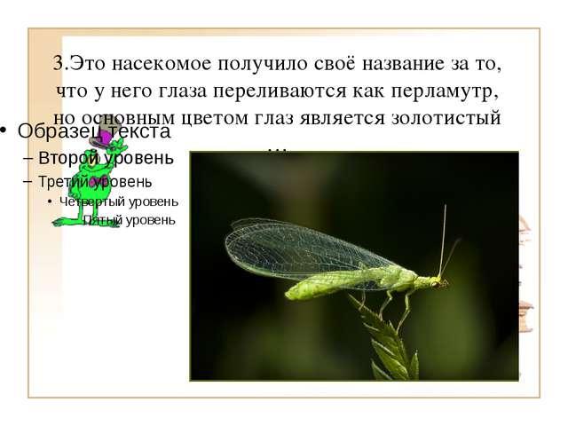 3.Это насекомое получило своё название за то, что у него глаза переливаются к...