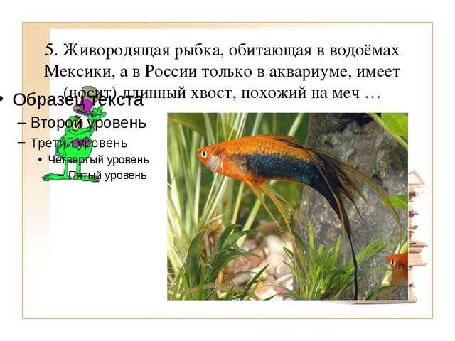 5. Живородящая рыбка, обитающая в водоёмах Мексики, а в России только в аквар...