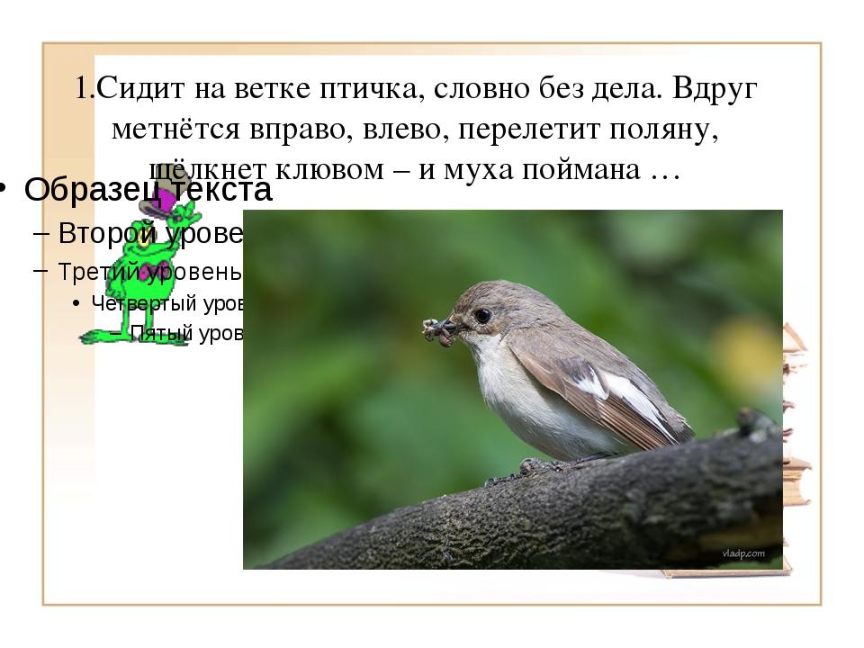 1.Сидит на ветке птичка, словно без дела. Вдруг метнётся вправо, влево, перел...