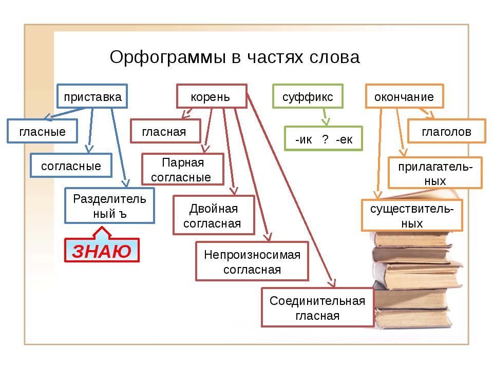 Орфограммы в частях слова приставка корень суффикс окончание гласные согласны...