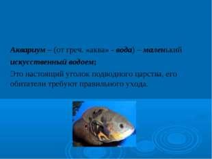 Аквариум – (от греч. «аква» - вода) – маленький искусственный водоем; Это н