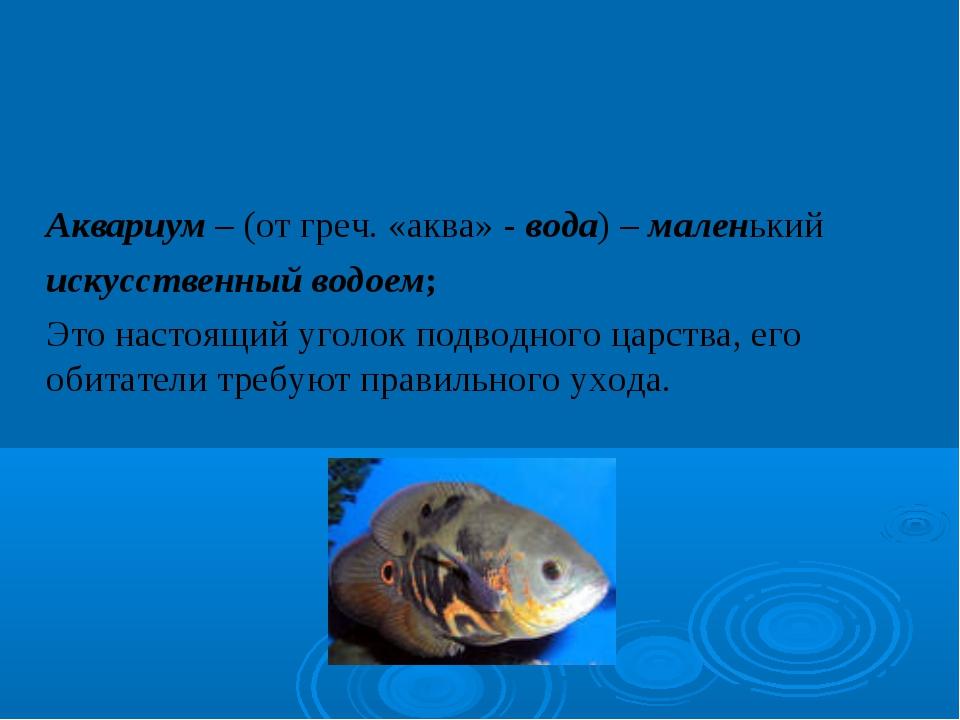 Аквариум – (от греч. «аква» - вода) – маленький искусственный водоем; Это н...