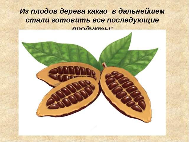 Из плодов дерева какао в дальнейшем стали готовить все последующие продукты:
