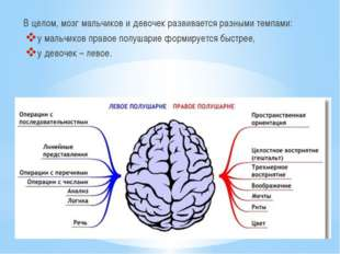 В целом, мозг мальчиков и девочек развивается разными темпами: у мальчиков пр