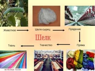 Животное Шелк-сырец Прядение Пряжа Ткачество Ткань