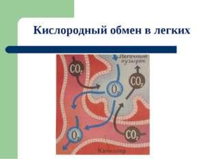 Кислородный обмен в легких