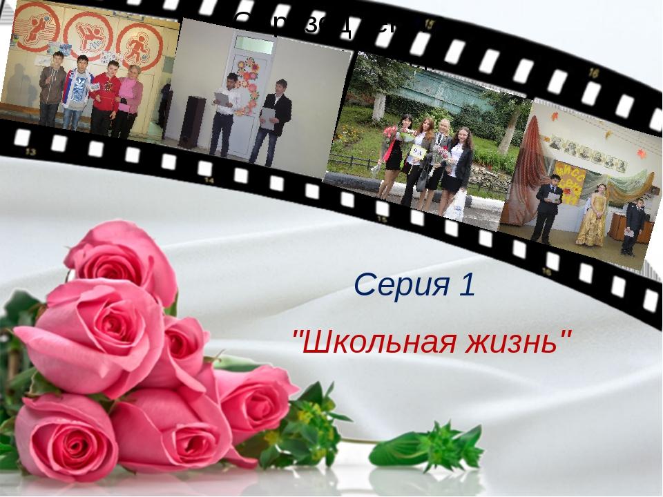 """Серия 1 """"Школьная жизнь"""""""