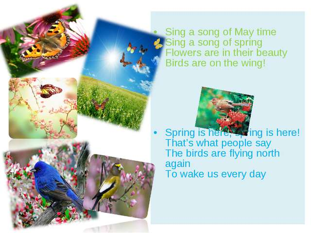 Sing a song of May time Sing a song of spring Flowers are in their beauty Bi...