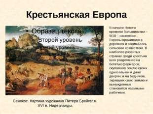 Крестьянская Европа Сенокос. Картина художника Питера Брейгеля. XVI в. Нидерл