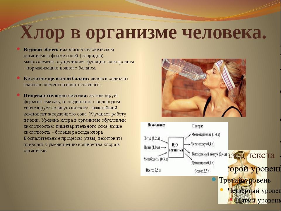 Хлор в организме человека. Водный обмен: находясь в человеческом организме в...