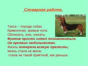 Словарная работа. Такса – порода собак. Кривоногая, кривые ноги. Обнюхать, н