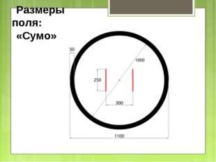 Размеры поля: «Сумо»