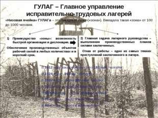 ГУЛАГ – Главное управление исправительно-трудовых лагерей «Низовая ячейка» ГУ