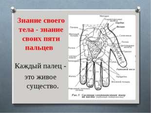 Знание своего тела - знание своих пяти пальцев Каждый палец - это живое суще