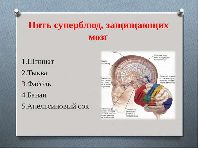 Пять суперблюд, защищающих мозг 1.Шпинат 2.Тыква 3.Фасоль 4.Банан 5.Апельсино...