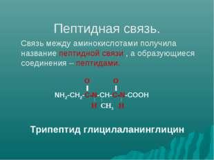 Пептидная связь. Связь между аминокислотами получила название пептидной связ