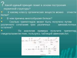 ? Какой единый принцип лежит в основе построения первичной структуры? К како