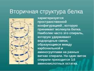 характеризуется пространственной конфигурацией , которую принимает молекула б