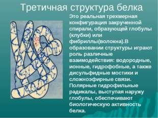 Это реальная трехмерная конфигурация закрученной спирали, образующей глобулы