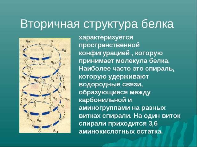 характеризуется пространственной конфигурацией , которую принимает молекула б...
