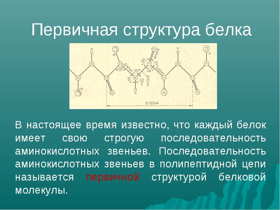 В настоящее время известно, что каждый белок имеет свою строгую последователь...