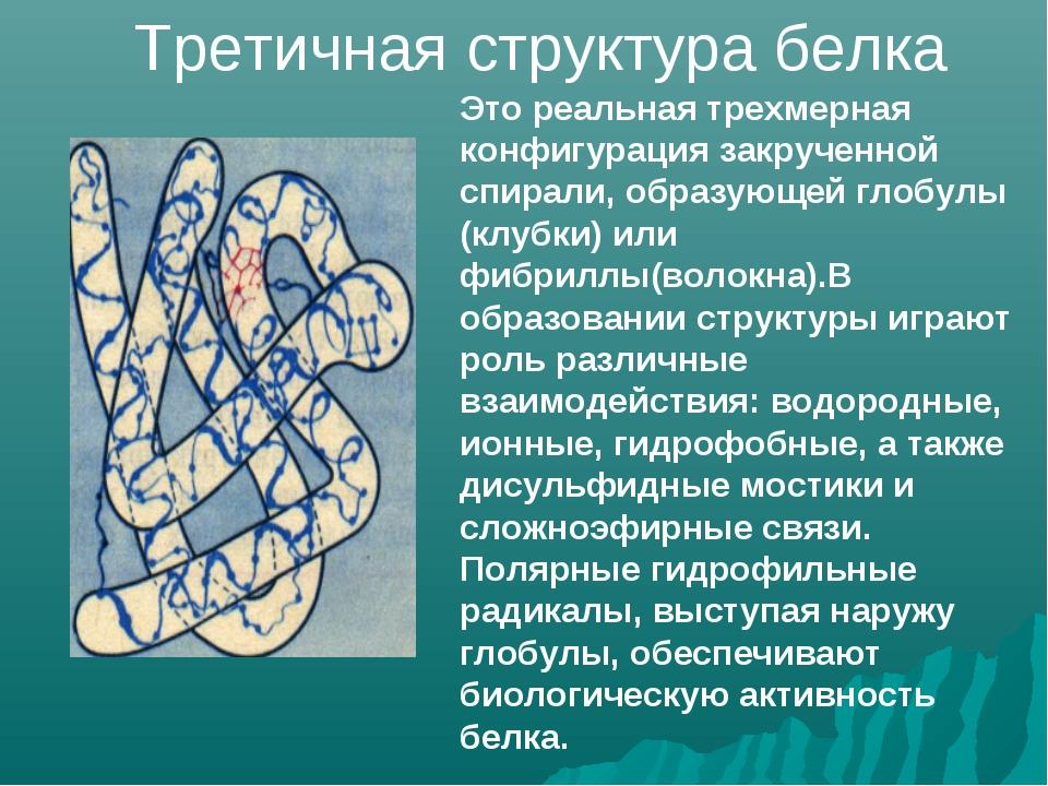 Это реальная трехмерная конфигурация закрученной спирали, образующей глобулы...