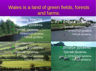 Wales is a land of green fields, forests and farms.