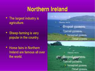 Northern Ireland The largest industry is agriculture. Sheep-farming is very