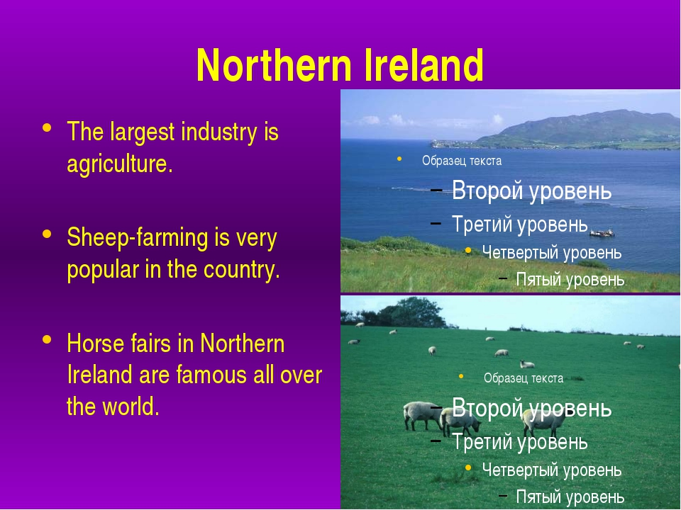 Northern Ireland The largest industry is agriculture. Sheep-farming is very...