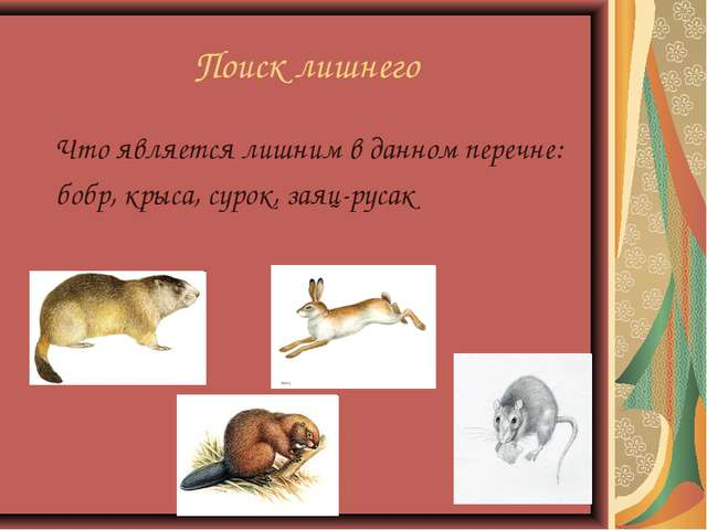 Поиск лишнего Что является лишним в данном перечне: бобр, крыса, сурок, заяц-...