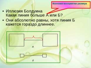 Иллюзия Болдуина Какая линия больше А или Б? Они абсолютно равны, хотя линия