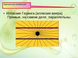 Зрительные искажения Иллюзия Геринга (иллюзия веера) Прямые, на самом деле, п