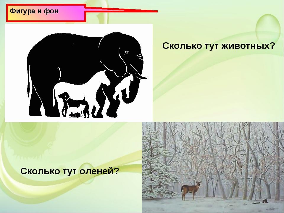 Фигура и фон Сколько тут животных? Сколько тут оленей?