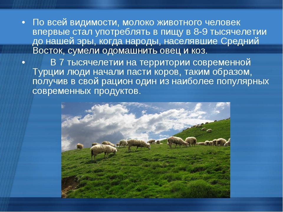 По всей видимости, молоко животного человек впервые стал употреблять в пищу...