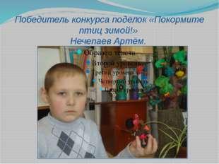 Победитель конкурса поделок «Покормите птиц зимой!» Нечепаев Артём.
