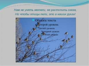 Нам не унять метели, не растопить снега, Но чтобы птицы пели, это в наших ру