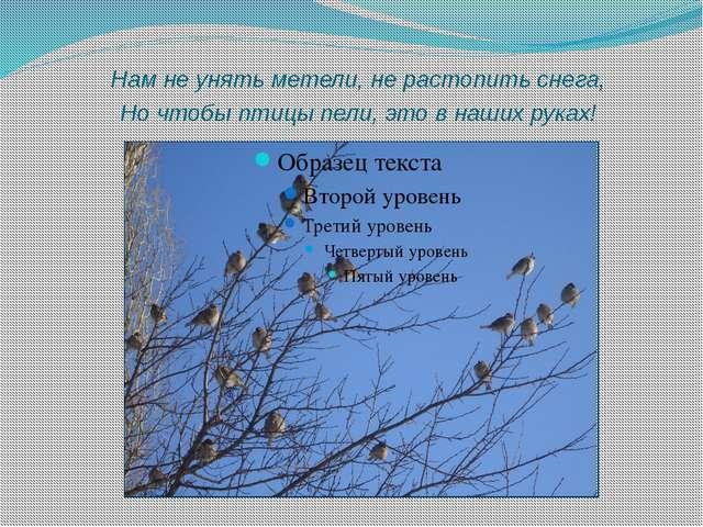 Нам не унять метели, не растопить снега, Но чтобы птицы пели, это в наших ру...