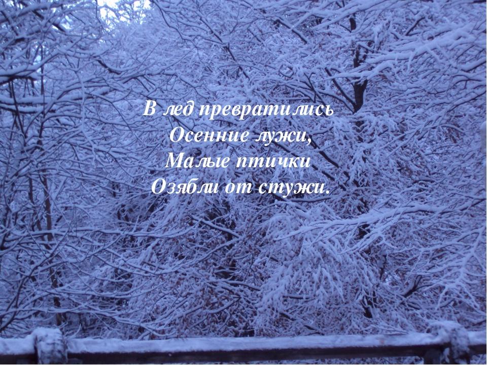В лед превратились Осенние лужи, Малые птички Озябли от стужи.