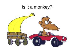 Is it a monkey?
